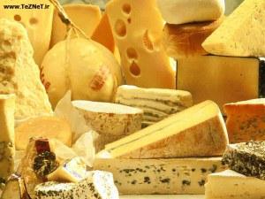 cheese-variety2