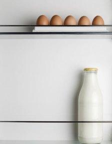 refrigerate-milk