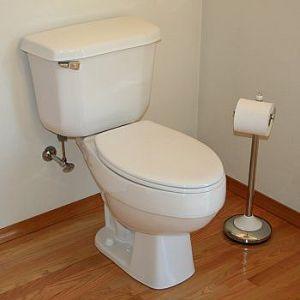 Your Toilet photo c/o ehow.com