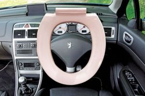 According to a new study, steering wheels have twice as many germs as toilet seats. Photo c/o autoexpress.co.uk
