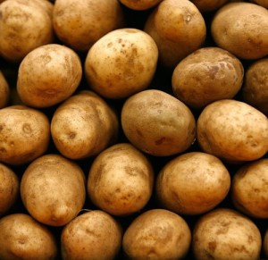 New Potatoes. Photo c/o about.com